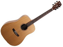 guitare folk Cort Earth Grand BW