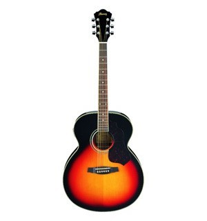 guitare folk Ibanez SGT130E-VS