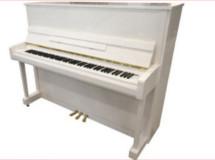 piano blanc225 X 160
