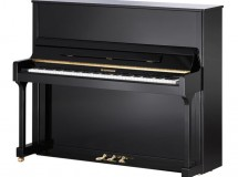 piano w hoffmann tradition noir