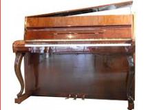 pianopiedschipp 225 X 160