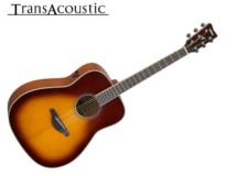 guitare transacoustique 225 X 160