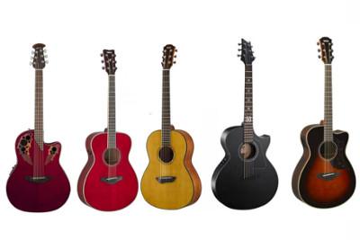 Fortes Remises sur Les Guitares Folk